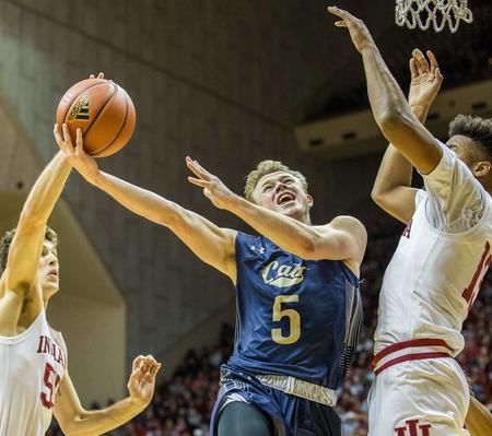 Montana State vs. Montana - 2/22/20 College Basketball Pick, Odds, and Prediction
