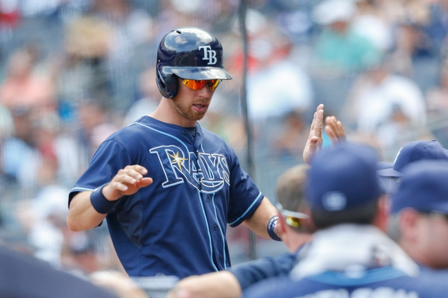 Jun 23, 2013; Bronx, NY, USA;  Tampa Bay Rays second baseman Ben Zobrist (18) high fives into the dugout after scoring during the seventh inning against the New York Yankees at Yankee Stadium.  Tampa won 3-1.  Mandatory Credit: Anthony Gruppuso-USA TODAY Sports