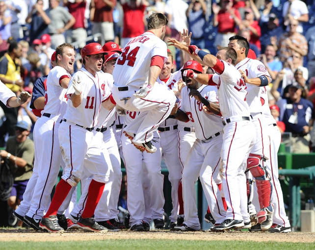 Jul 25, 2013; Washington, DC, USA; Washington Nationals center fielder Bryce Harper (34) is congratulated by teammates after hitting a walk-off two run home run during the ninth inning against the Pittsburgh Pirates at Nationals Park. Mandatory Credit: Brad Mills-USA TODAY Sports