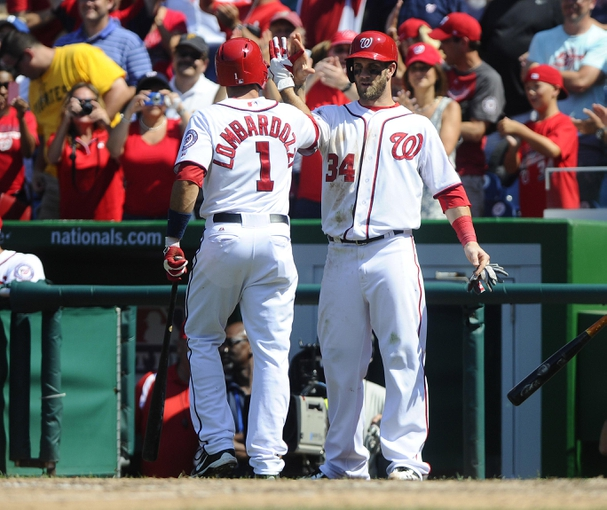 Jul 25, 2013; Washington, DC, USA; Washington Nationals center fielder Bryce Harper (34) and Stephen Lombardozzi (1) congratulate each other after scoring runs during the eighth inning against the Pittsburgh Pirates at Nationals Park. Mandatory Credit: Brad Mills-USA TODAY Sports