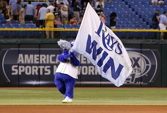 "Jul 30, 2013; St. Petersburg, FL, USA; Tampa Bay Rays mascot holds a flag that says ""Rays Win"" after they beat the Arizona Diamondbacks at Tropicana Field. Tampa Bay Rays defeated the Arizona Diamondbacks 5-2. Mandatory Credit: Kim Klement-USA TODAY Sports"