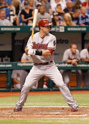 Jul 30, 2013; St. Petersburg, FL, USA; Arizona Diamondbacks first baseman Paul Goldschmidt (44) at bat against the Tampa Bay Rays at Tropicana Field. Mandatory Credit: Kim Klement-USA TODAY Sports