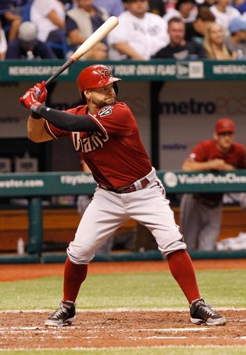 Jul 31, 2013; St. Petersburg, FL, USA; Arizona Diamondbacks right fielder Cody Ross (7) at bat against the Tampa Bay Rays at Tropicana Field. Mandatory Credit: Kim Klement-USA TODAY Sports