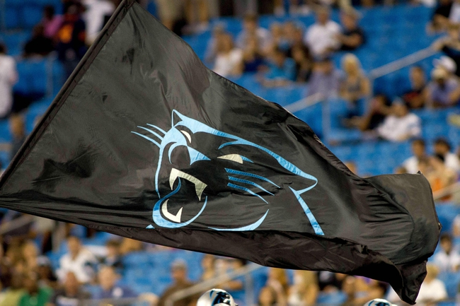 Aug 9, 2013; Charlotte, NC, USA; A Carolina Panthers flag is ran across the field after a score during the second half against the Chicago Bears. The Panthers defeated the Bears 24-17. Mandatory Credit: Jeremy Brevard-USA TODAY Sports