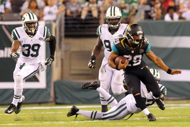Aug 17, 2013; East Rutherford, NJ, USA; Jacksonville Jaguars running back Jonathan Grimes (29) runs the ball against the New York Jets during the fourth quarter of a preseason game at MetLife Stadium. The Jets defeated the Jaguars 37-13. Mandatory Credit: Brad Penner-USA TODAY Sports