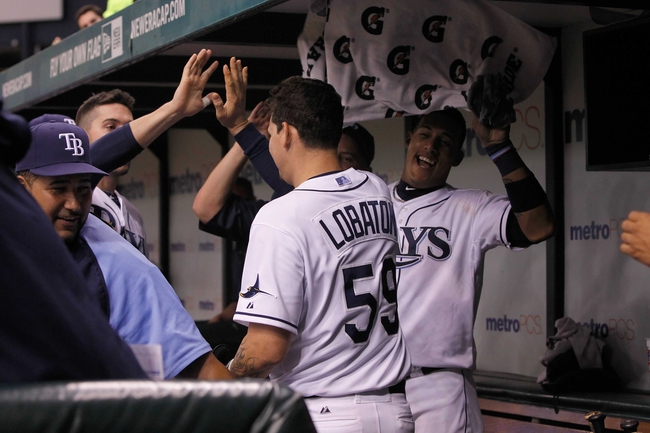 Aug 15, 2013; St. Petersburg, FL, USA; Tampa Bay Rays catcher Jose Lobaton (59) is congratulated by teammates in the dugout after he scored during the eighth inning against the Seattle Mariners at Tropicana Field. Tampa Bay Rays defeated the Seattle Mariners 7-1. Mandatory Credit: Kim Klement-USA TODAY Sports