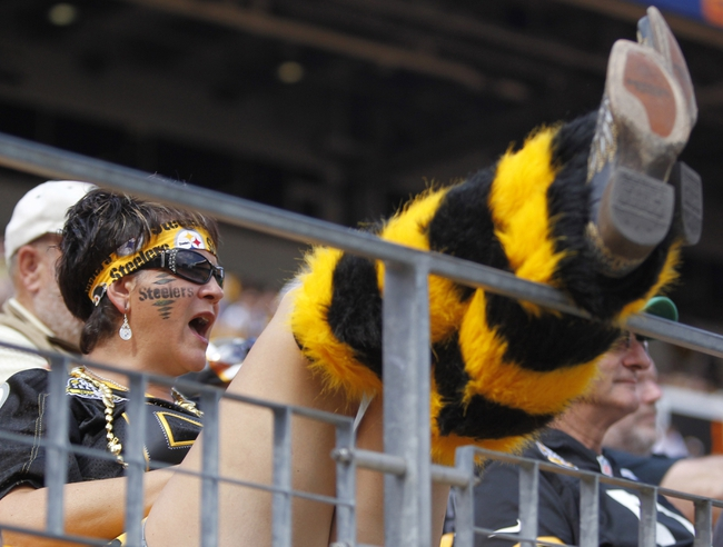 Sep 8, 2013; Pittsburgh, PA, USA; Pittsburgh Steelers fan Karen Hartl cheers on the team against the Tennessee Titans during the fourth quarter at Heinz Field. The Tennessee Titans won 16-9. Mandatory Credit: Charles LeClaire-USA TODAY Sports
