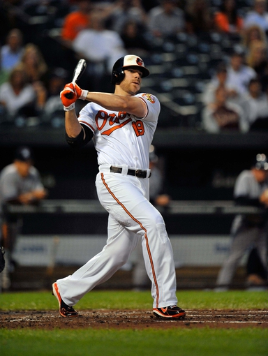Sep 9, 2013; Baltimore, MD, USA; Baltimore Orioles first baseman Chris Davis (19) bats in the first inning against the New York Yankees at Oriole Park at Camden Yards. The Orioles defeated the Yankees 4-2. Mandatory Credit: Joy R. Absalon-USA TODAY Sports