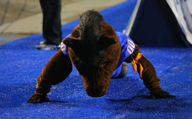 Sep 13, 2013; Boise, ID, USA; Boise State Broncos mascot Buster Bronco does pushups after a Boise State score during the second half against the Air Force Falcons at Bronco Stadium. Boise State defeated the Air Force 42-20. Mandatory Credit: Brian Losness-USA TODAY Sports