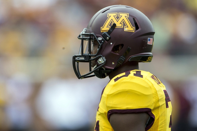 Sep 14, 2013; Minneapolis, MN, USA; Minnesota Golden Gophers defensive back Eric Murray (31) looks on during the third quarter against the Western Illinois Leathernecks at TCF Bank Stadium. The Gophers won 29-12. Mandatory Credit: Jesse Johnson-USA TODAY Sports