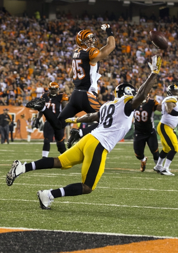 Sep 16, 2013; Cincinnati, OH, USA; Cincinnati Bengals tight end Tyler Eifert (85) and Pittsburgh Steelers linebacker Vince Williams (98) both miss an errant pass at Paul Brown Stadium. Cincinnati won the game 20-10. Mandatory Credit: Greg Bartram-USA TODAY Sports