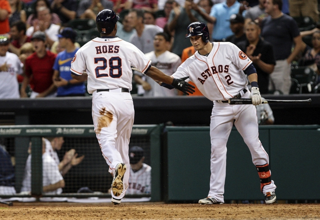 Sep 18, 2013; Houston, TX, USA; Houston Astros right fielder L.J. Hoes (28) is congratulated by center fielder Brandon Barnes (2) after scoring a run during the sixth inning against the Cincinnati Reds at Minute Maid Park. Mandatory Credit: Troy Taormina-USA TODAY Sports