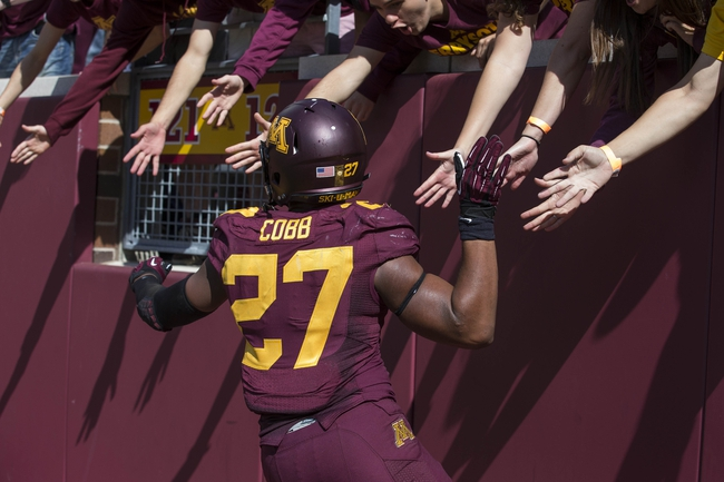 Sep 21, 2013; Minneapolis, MN, USA; Minnesota Golden Gophers running back David Cobb (27) celebrates with fans after scoring a touchdown in the second half against the San Jose State Spartans at TCF Bank Stadium. The Gophers won 43-24. Mandatory Credit: Jesse Johnson-USA TODAY Sports