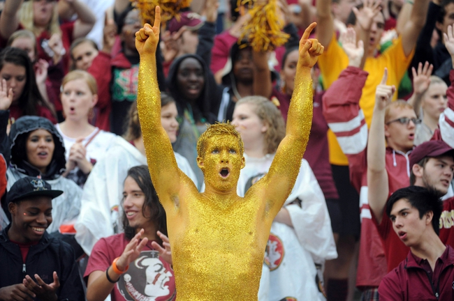 Sep 21, 2013; Tallahassee, FL, USA; Florida State Seminoles fans cheer on their team during game against the Bethune-Cookman Wildcats at Doak Campbell Stadium. Mandatory Credit: Melina Vastola-USA TODAY Sports