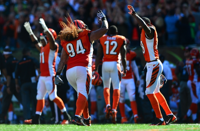 Sep 22, 2013; Cincinnati, OH, USA; Cincinnati Bengals defensive tackle Domata Peko (94) celebrates with teammates after a fumble recovered for a touchdown during the fourth quarter against the Green Bay Packers at Paul Brown Stadium. Mandatory Credit: Andrew Weber-USA TODAY Sports