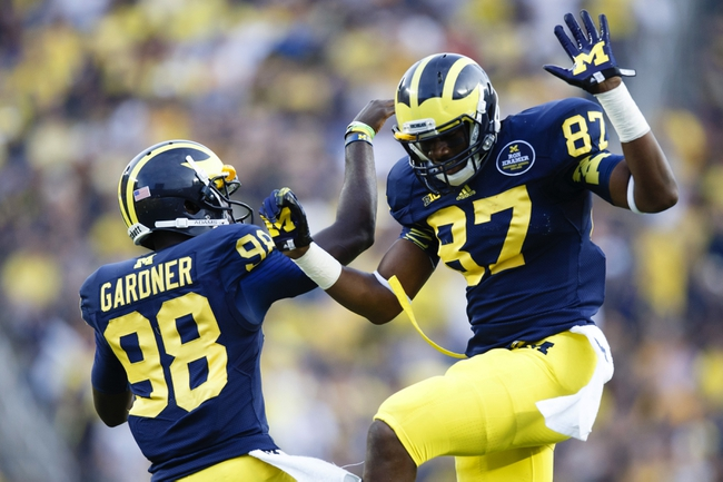 Oct 5, 2013; Ann Arbor, MI, USA; Michigan Wolverines tight end Devin Funchess (87) celebrates his forty six yard reception with quarterback Devin Gardner (98) in the fourth quarter against the Minnesota Golden Gophers at Michigan Stadium. Michigan won 42-13. Mandatory Credit: Rick Osentoski-USA TODAY Sports