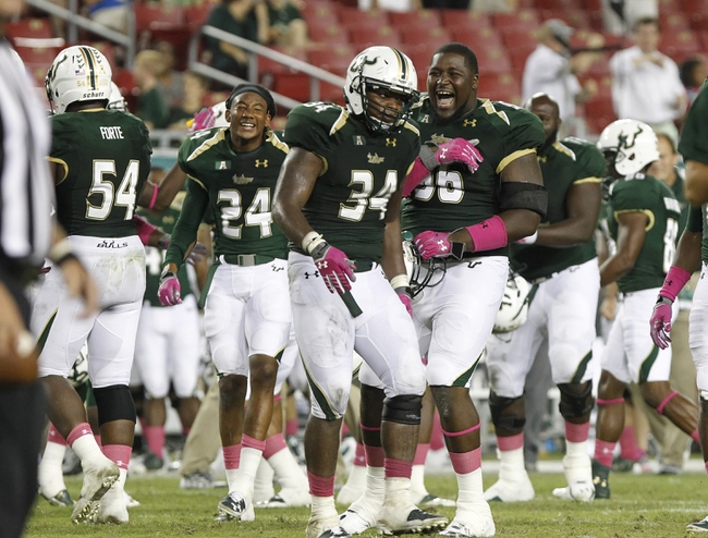 Oct 5, 2013; Tampa, FL, USA; South Florida Bulls linebacker Devekeyan Lattimore (34), South Florida Bulls defensive lineman Anthony Hill (96) and teammates congratulate each other after they beat  the Cincinnati Bearcats during the second half at Raymond James Stadium. South Florida Bulls defeated the Cincinnati Bearcats 26-20. Mandatory Credit: Kim Klement-USA TODAY Sports
