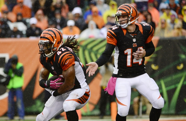 Oct 6, 2013; Cincinnati, OH, USA; Cincinnati Bengals quarterback Andy Dalton (14) hands the ball off to running back BenJarvus Green-Ellis (42) against the New England Patriots at Paul Brown Stadium. The Bengals won 13-6.  Mandatory Credit: Marc Lebryk-USA TODAY Sports