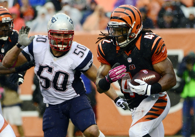 Oct 6, 2013; Cincinnati, OH, USA; Cincinnati Bengals running back BenJarvus Green-Ellis (42) runs the ball with New England Patriots defensive end Rob Ninkovich (50) in pursuit in the second half at Paul Brown Stadium. The Bengals won 13-6.  Mandatory Credit: Marc Lebryk-USA TODAY Sports
