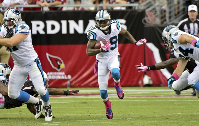 Oct 6, 2013; Phoenix, AZ, USA; Carolina Panthers wide receiver Ted Ginn (19) runs with the ball during the second half against the Arizona Cardinals at University of Phoenix Stadium. Mandatory Credit: Matt Kartozian-USA TODAY Sports