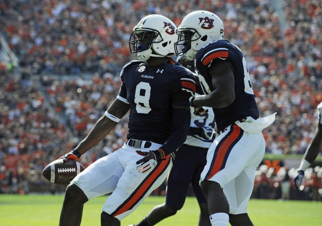 Oct 12, 2013; Auburn, AL, USA; Auburn Tigers wide receiver Tony Stevens (8) celebrates a touchdown during the first half against the Western Carolina Catamounts at Jordan Hare Stadium. Mandatory Credit: Shanna Lockwood-USA TODAY Sports