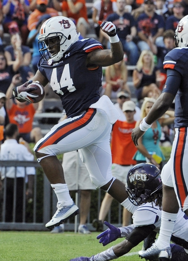 Oct 12, 2013; Auburn, AL, USA; Auburn Tigers running back Cameron Artis-Payne (44) runs the ball for a touchdown in the second half against the Western Carolina Catamounts at Jordan Hare Stadium. The Tigers defeated the Catamounts 62-3. Mandatory Credit: Shanna Lockwood-USA TODAY Sports