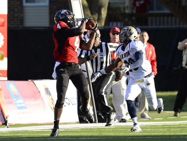 Oct 12, 2013; DeKalb, IL, USA; Northern Illinois Huskies wide receiver Da'Ron Brown (4) makes a catch against Akron Zips cornerback Malachi Freeman (20) during the first half at Huskie Stadium. Mandatory Credit: Mike DiNovo-USA TODAY Sports