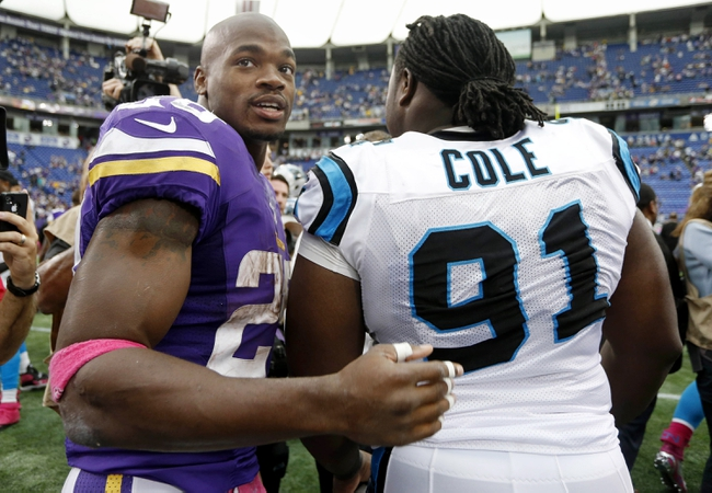 Oct 13, 2013; Minneapolis, MN, USA; Minnesota Vikings running back Adrian Peterson (28) meets with Carolina Panthers defensive tackle Colin Cole (91) after the game at Mall of America Field at H.H.H. Metrodome. Panthers win 35-10. Mandatory Credit: Bruce Kluckhohn-USA TODAY Sports