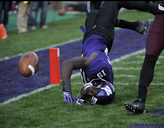 Oct 19, 2013; Evanston, IL, USA; Northwestern Wildcats wide receiver Cameron Dickerson (19) is defended by Minnesota Golden Gophers defensive back Eric Murray (not pictured) during the second half at Ryan Field.  The Minnesota Golden Gophers defeated the Northwestern Wildcats 20-17. Mandatory Credit: David Banks-USA TODAY Sports
