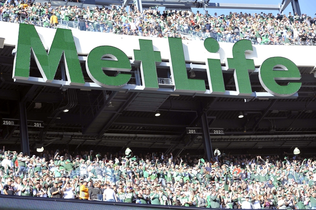 Oct 20, 2013; East Rutherford, NJ, USA; New York Jets fans celebrate a touchdown by New York Jets quarterback Geno Smith (not pictured) during the second half at MetLife Stadium. The Jets won the game 30-27 in overtime. Mandatory Credit: Joe Camporeale-USA TODAY Sports