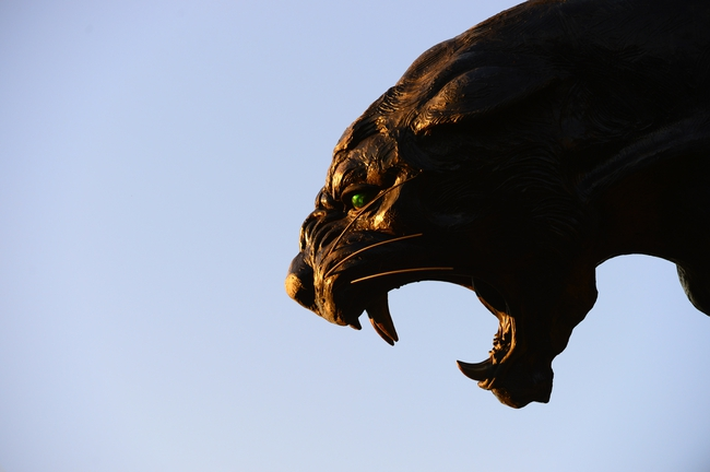 Oct 20, 2013; Charlotte, NC, USA; A close up view of the Carolina Panthers statue at Bank of America Stadium. The  Panthers defeated the St. Louis Rams 30-15. Mandatory Credit: Bob Donnan-USA TODAY Sports