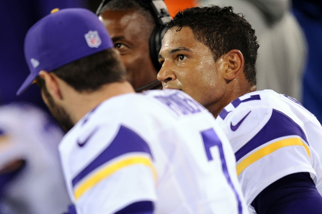 Oct 21, 2013; East Rutherford, NJ, USA; Minnesota Vikings quarterback Josh Freeman (12) looks on in the final minutes of his team's loss to the New York Giants at MetLife Stadium. The Giants won the game 23-7. Mandatory Credit: Joe Camporeale-USA TODAY Sports