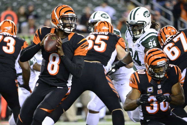 Oct 27, 2013; Cincinnati, OH, USA; Cincinnati Bengals quarterback Josh Johnson (8) prepares to throw the ball during the second half of the game at Paul Brown Stadium. Mandatory Credit: Marc Lebryk-USA TODAY Sports