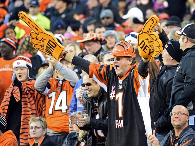 Oct 27, 2013; Cincinnati, OH, USA; A Cincinnati Bengals fan during the second half of the game at Paul Brown Stadium. Mandatory Credit: Marc Lebryk-USA TODAY Sports