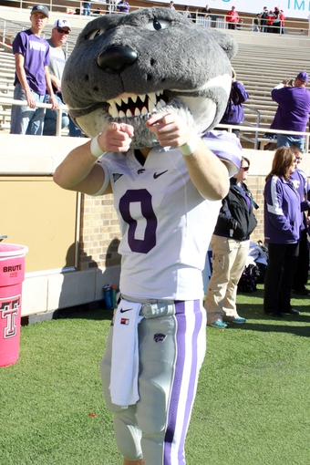 Nov 9, 2013; Lubbock, TX, USA; The Kansas State Wildcats mascot on the the sidelines during the game with the Texas Tech Red Raiders at Jones AT&T Stadium. Mandatory Credit: Michael C. Johnson-USA TODAY Sports
