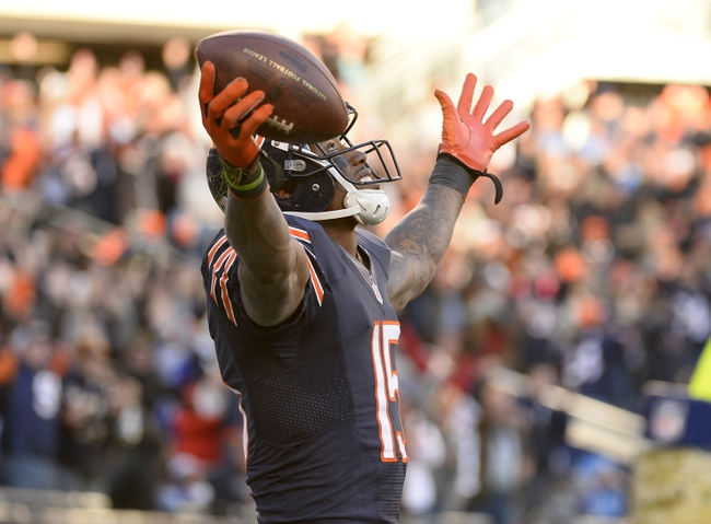 Nov 10, 2013; Chicago, IL, USA; Chicago Bears wide receiver Brandon Marshall (15) reacts after catching a touchdown against the Detroit Lions during the second half at Soldier Field. Detroit defeats Chicago 21-19. Mandatory Credit: Mike DiNovo-USA TODAY Sports