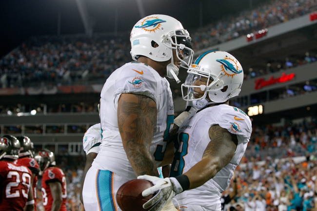 Nov 11, 2013; Tampa, FL, USA; Miami Dolphins wide receiver Rishard Matthews (18) is congratulated by center Mike Pouncey (51) after he scored a touchdown against the Tampa Bay Buccaneers during the second half at Raymond James Stadium. Mandatory Credit: Kim Klement-USA TODAY Sports