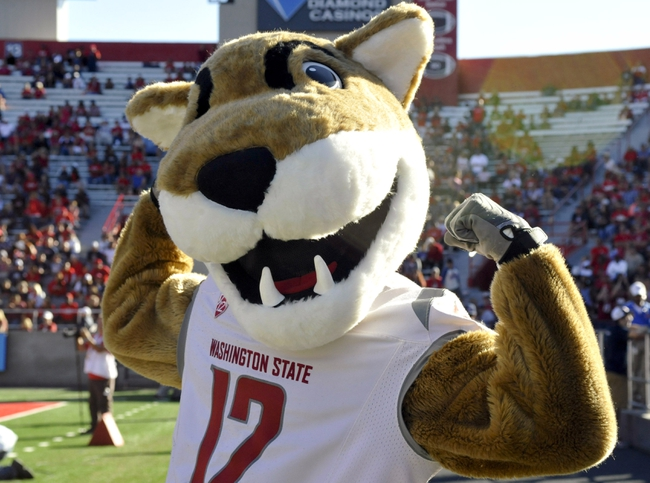Nov 16, 2013; Tucson, AZ, USA; Washington State Cougars mascot Butch celebrates during the fourth quarter against the Arizona Wildcats at Arizona Stadium. The Cougars beat the Wildcats 24-17. Mandatory Credit: Casey Sapio-USA TODAY Sports