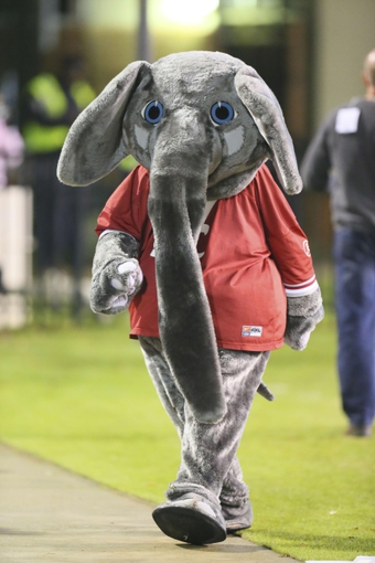 Nov 16, 2013; Starkville, MS, USA; Alabama Crimson Tide mascot Big Al during the game against the Mississippi State Bulldogs at Davis Wade Stadium. Alabama Crimson Tide defeat the Mississippi State Bulldogs with a score of 20-7.  Mandatory Credit: Spruce Derden-USA TODAY Sports