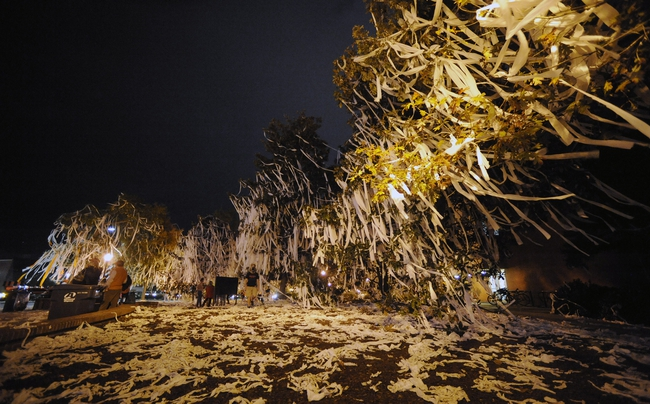 Nov 16, 2013; Auburn, AL, USA; A general view of Toomer's Corner after the game between the Auburn Tigers and the Georgia Bulldogs at Jordan Hare Stadium. The Tigers defeated the Bulldogs 43-38. Mandatory Credit: Shanna Lockwood-USA TODAY Sports