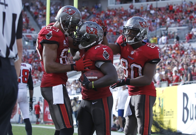 Nov 17, 2013; Tampa, FL, USA; Tampa Bay Buccaneers running back Bobby Rainey (43) celebrates with wide receiver Vincent Jackson (83) wide receiver Chris Owusu (80) after he ran the ball in for a touchdown during the second half against the Atlanta Falcons at Raymond James Stadium. Tampa Bay Buccaneers defeated the Atlanta Falcons 41-28. Mandatory Credit: Kim Klement-USA TODAY Sports