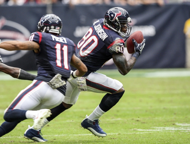 Nov 17, 2013; Houston, TX, USA; Houston Texans wide receiver Andre Johnson (80) makes a reception during the third quarter against the Oakland Raiders at Reliant Stadium. The Raiders defeated the Texans 28-23. Mandatory Credit: Troy Taormina-USA TODAY Sports