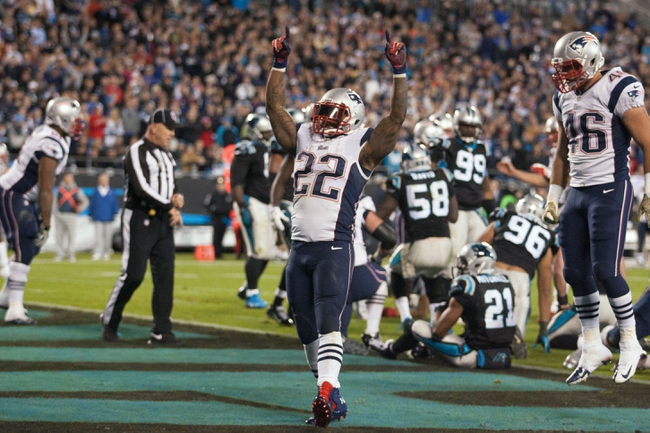 Nov 18, 2013; Charlotte, NC, USA; New England Patriots running back Stevan Ridley (22) celebrates after scoring a touchdown during the fourth quarter against the Carolina Panthers at Bank of America Stadium. The Panthers defeated the Patriots 24-20. Mandatory Credit: Jeremy Brevard-USA TODAY Sports