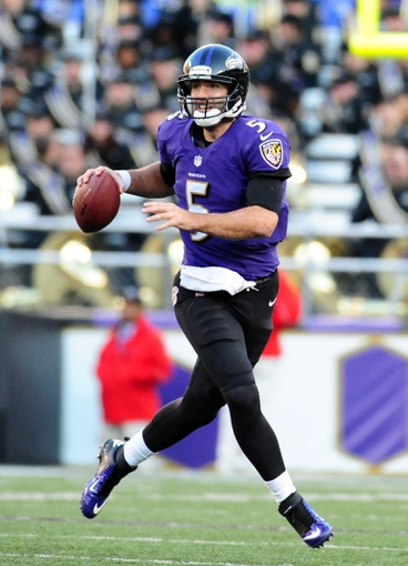 Nov 10, 2013; Baltimore, MD, USA; Baltimore Ravens quarterback Joe Flacco (5) looks to throw the ball during the game against the Cincinnati Bengals at M&T Bank Stadium. Mandatory Credit: Evan Habeeb-USA TODAY Sports