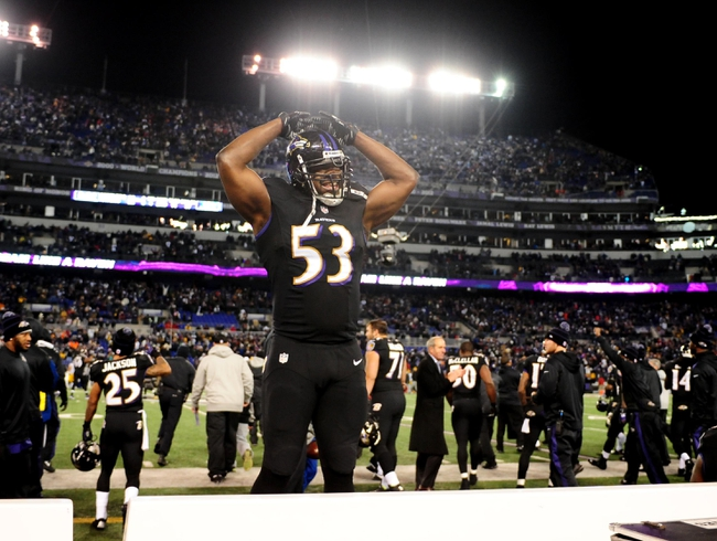 Nov 28, 2013; Baltimore, MD, USA; Baltimore Ravens linebacker Jameel McClain (53) reacts after beating the Pittsburgh Steelers 22-20 during a NFL football game on Thanksgiving at M&T Bank Stadium. Mandatory Credit: Evan Habeeb-USA TODAY Sports