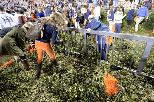 Nov 30, 2013; Auburn, AL, USA; Auburn Tigers fans tear down the shrubs after defeating the Alabama Crimson Tide at Jordan Hare Stadium. Auburn Tigers won 34-28. Mandatory Credit: John David Mercer-USA TODAY Sports