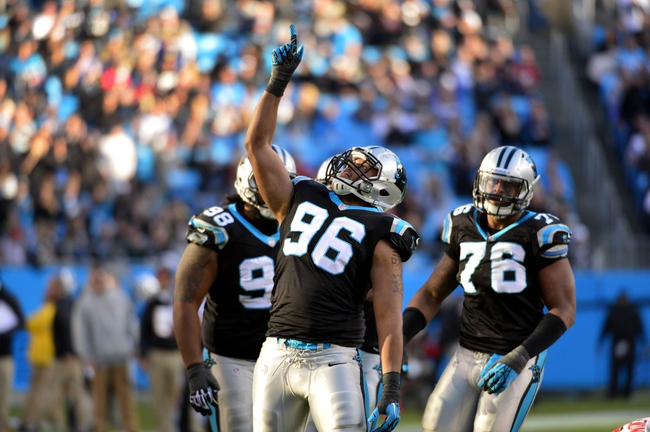 Dec 1, 2013; Charlotte, NC, USA; Carolina Panthers defensive end Wes Horton (96) reacts after sacking Tampa Bay Buccaneers quarterback Mike Glennon (8) (not pictured) in the fourth quarter. The Carolina Panthers defeated the Tampa Bay Buccaneers 27-6 at Bank of America Stadium. Mandatory Credit: Bob Donnan-USA TODAY Sports