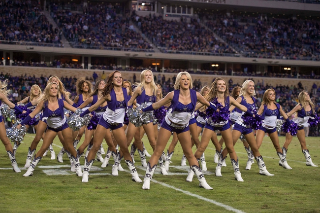 Nov 30, 2013; Fort Worth, TX, USA; The TCU Horned Frogs showgirl cheerleaders perform during the game between the Horned Frogs and the Baylor Bears at Amon G. Carter Stadium. The Bears defeated the Horned Frogs 41-38. Mandatory Credit: Jerome Miron-USA TODAY Sports