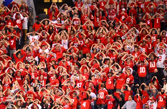 Dec 7, 2013; Indianapolis, IN, USA; Ohio State Buckeyes fans cheer during the third quarter of the 2013 Big 10 Championship game against the Michigan State Spartans at Lucas Oil Stadium. Mandatory Credit: Andrew Weber-USA TODAY Sports