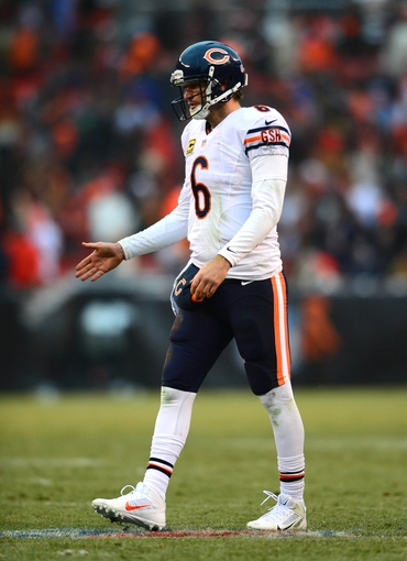 Dec 15, 2013; Cleveland, OH, USA; Chicago Bears quarterback Jay Cutler (6) celebrates after a touchdown during the fourth quarter against the Cleveland Browns at FirstEnergy Stadium. Mandatory Credit: Andrew Weber-USA TODAY Sports